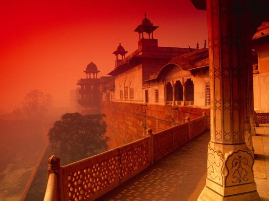 Informacion Sobre India -  - Buteler en India